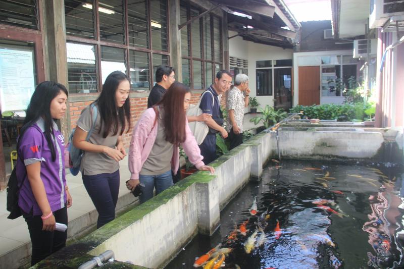 Mahasiswa student exchange dan Dekan bersama fasilitator  saat melihat kolam ikan koi untuk penelitian Aquaphonic di Fakultas Teknik UKWMS