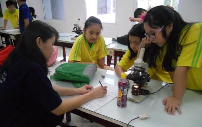 Kunjungan SD Xin Zhong: Belajar Mengenal Tanaman