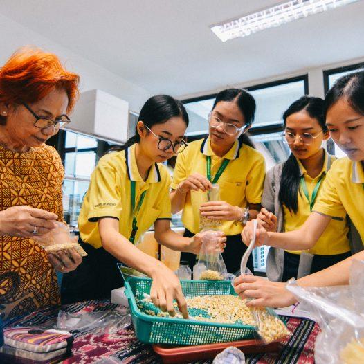 Calon Perawat Thailand Terpikat Tempe Indonesia